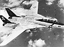 F-14A эскадрильи VF-84 с авианосца USS Theodore Roosevelt. 1980-е годы, Северная Атлантика.