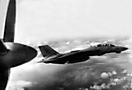 F-14A эскадрильи VF-102 с авианосца USS America. Конец 1980-х годов.