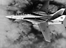 F-14A из эскадрильи VF-102 с авианосца USS America.