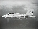 F-14A из эскадрильи VF-33 ВМС США (авианосец USS America)